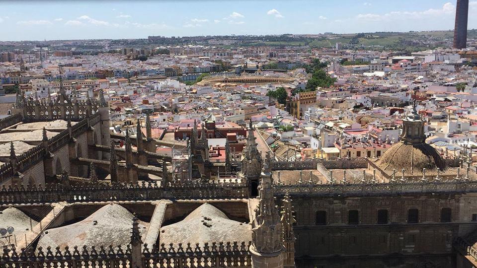 Vista panoramica Giralda Siviglia