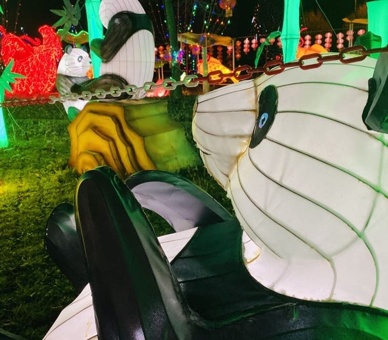 Visitare Festival delle lanterne FICO Bologna: tutte le informazioni utili