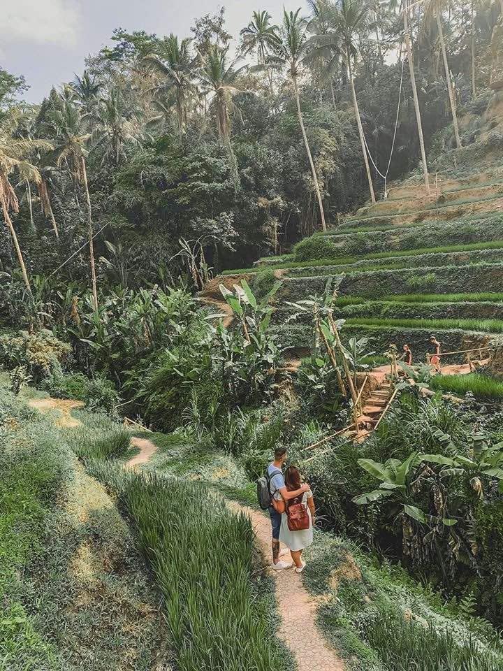 Vuoi visitare Ubud e dintorni, ma non sai cosa vedere? Sei nel posto giusto. Leggendo questa guida, ti daremo informazioni utili e consigli pratici su cosa da vedere ad Ubud e dintorni, indicandoti anche gli orari e i prezzi delle attrazioni. In questo modo riuscirai ad organizzare il tuo viaggio a Bali in autonomia.