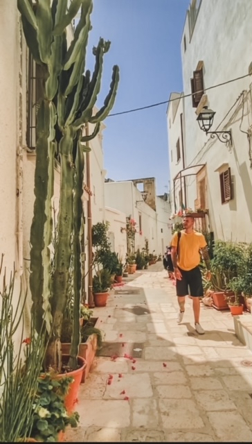 Ragazzo cammina in un vicolo instagrammabili pieno di Cactus bellissimi